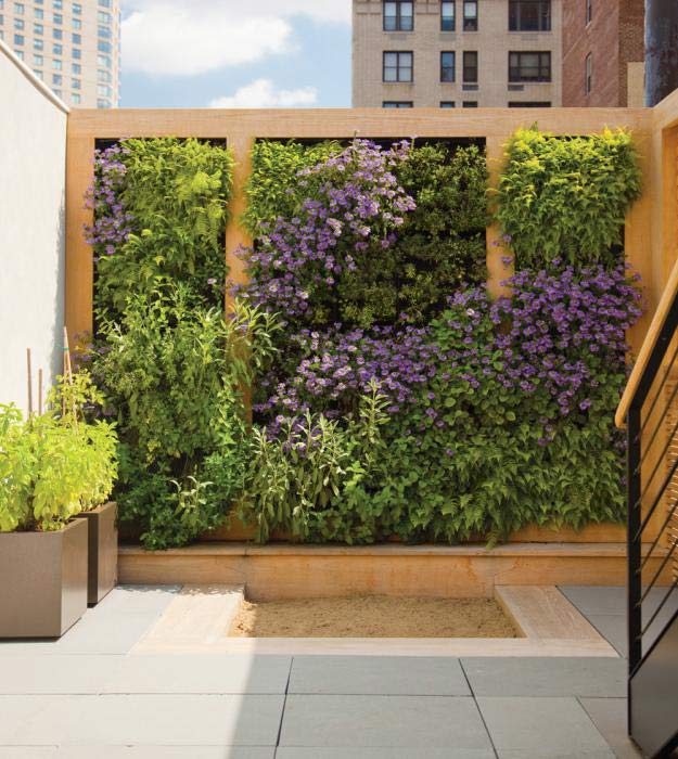 Green Walls Add Tranquil Beauty To Your Southeastern PA
