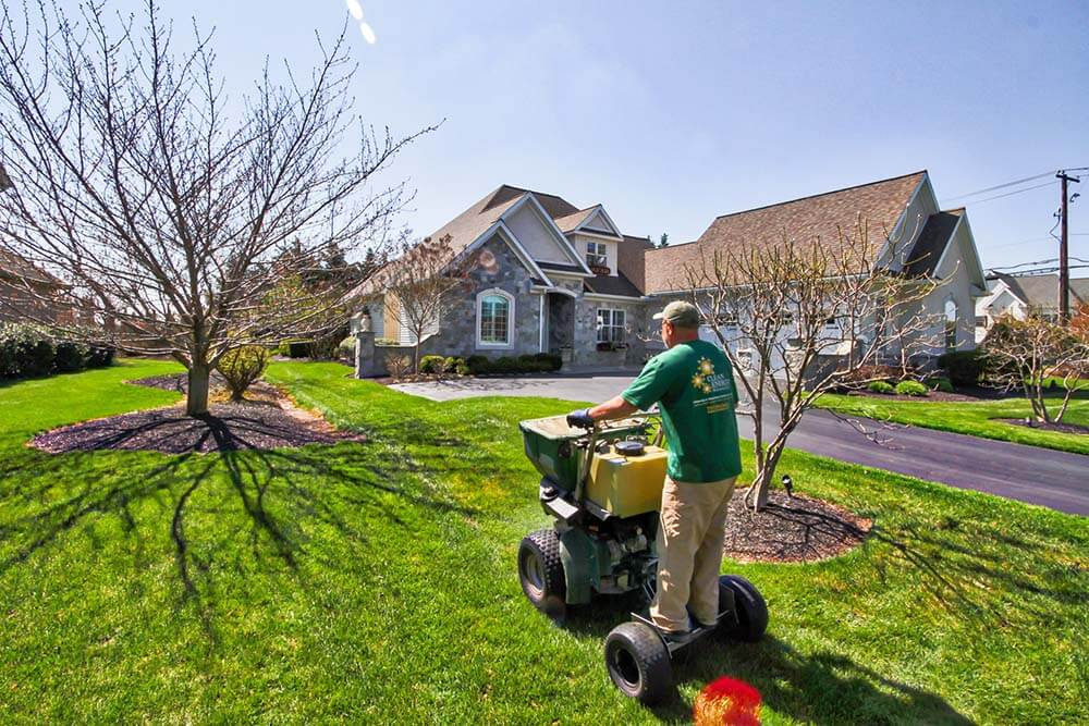 lawn care and spreading - Lawncare