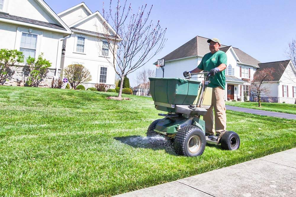Lawn Care and Spreading