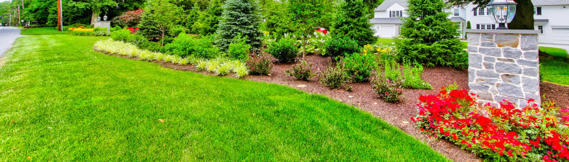 Lawn care services clean energy maintenance inc for Local lawn care services