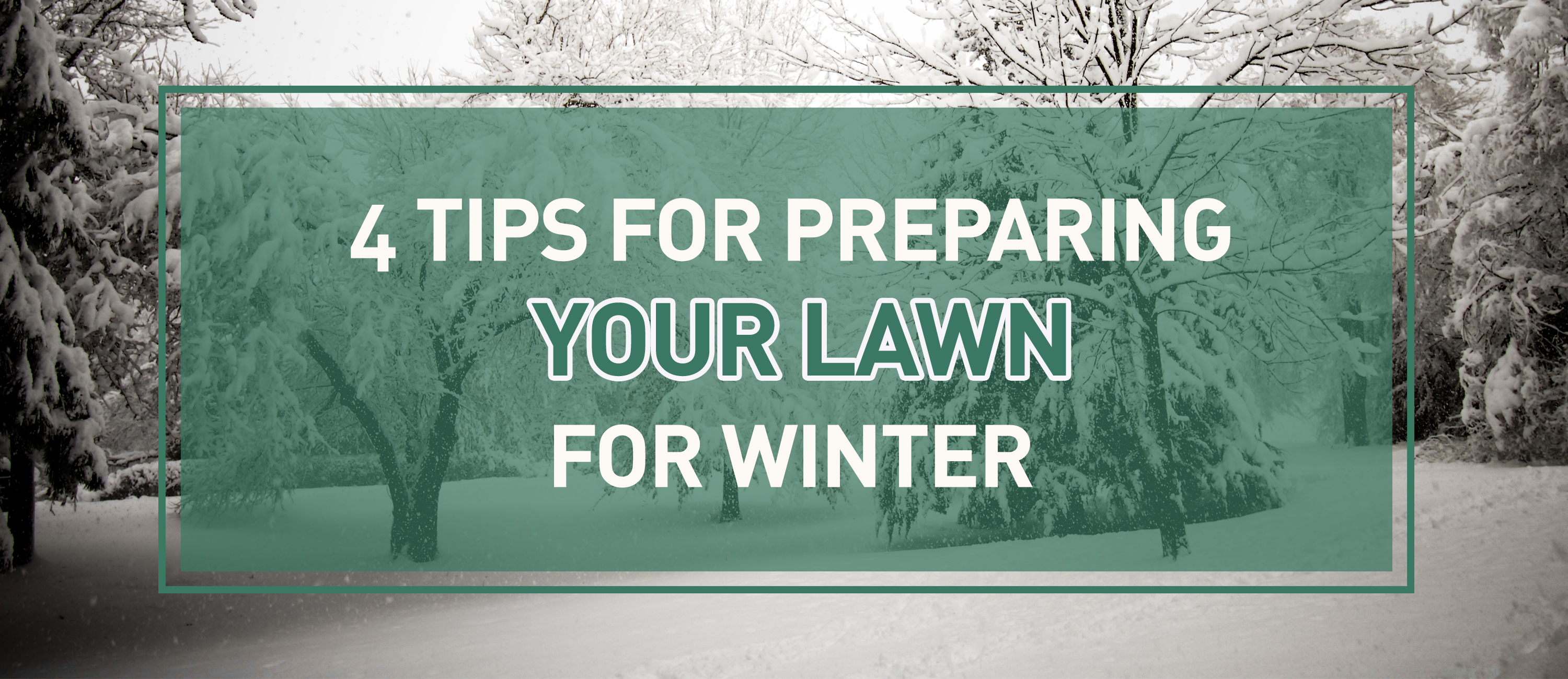 Prepare Lawn For Winter 4 tips for preparing your lawn for winter - clean energy